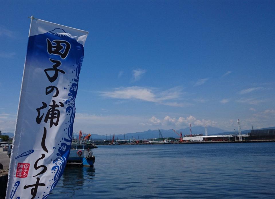 のぼり旗たなびく田子の浦港