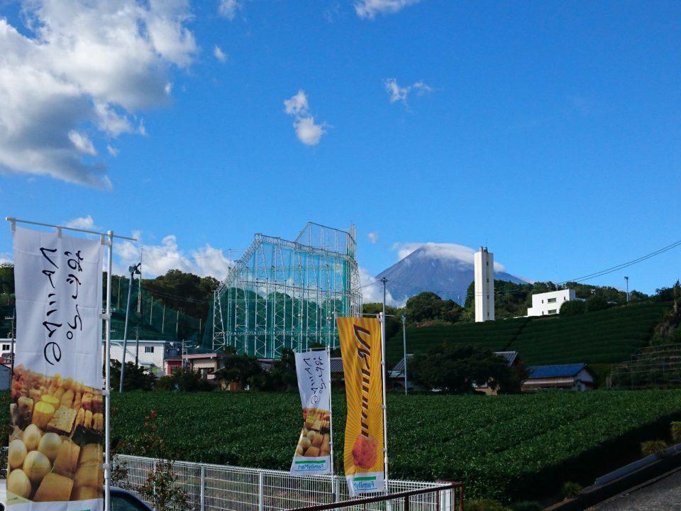 コンビニから眺める茶畑と富士山